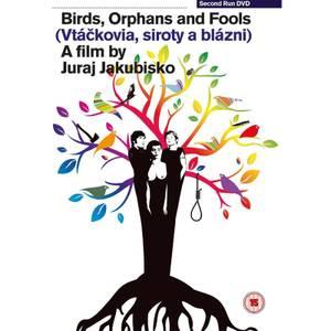 Birds, Orphans and Fools (Vtáckovia, Siroty A Blázni)