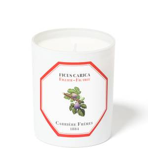 Carrière Frères Scented Candle Fig Tree - Ficus Carica - 185 g