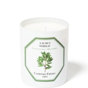 Carrière Frères Scented Candle Bay Laurel - Laurus Nobilis - 185 g