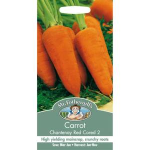 Mr. Fothergill's Carrot Chantenay Red Cored 2 (Daucus Carota) Seeds