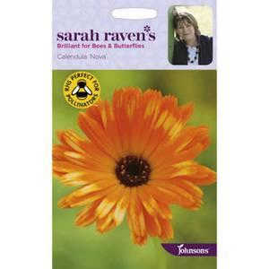Sarah Ravens Calendula Pot Marigold Nova Seeds