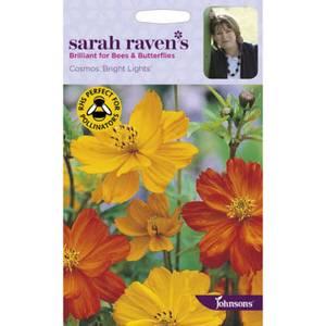 Sarah Ravens Cosmos Bright Lights Seeds