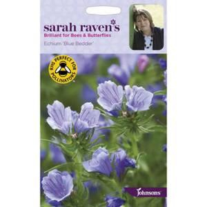 Sarah Ravens Echium Blue Bedder Seeds