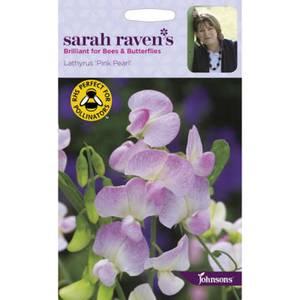 Sarah Ravens Lathyrus Pink Pearl (Perennial Sweet Pea) Seeds