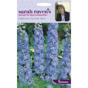 Sarah Ravens Delphinium Summer Skies Seeds