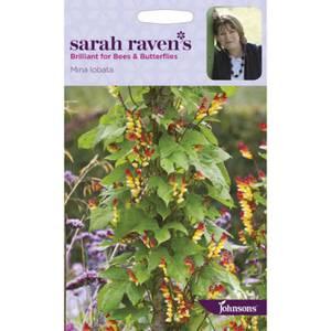 Sarah Ravens Mina Iobata Seeds