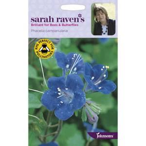 Sarah Ravens Phacelia Campanularia Seeds
