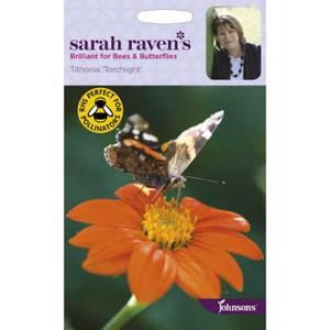 Sarah Ravens Tithonia Torchlight Seeds