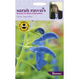 Sarah Ravens Salvia Deep Blue Seeds