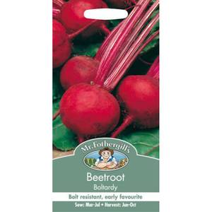 Beetroot Boltardy (Beta Vulgaris) Seeds