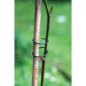 Plant Rings Galvanised Steel - Pack of 50