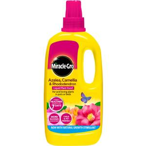 Miracle-Gro Azalea, Camellia & Rhododendron Concentrated Liquid Plant Food - 1L
