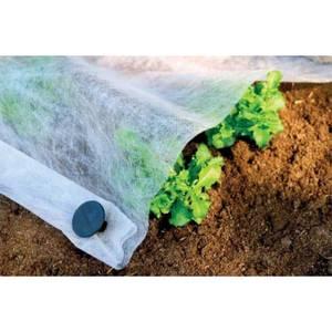 Plant Protection Fleece - 4.5 x 2.2m