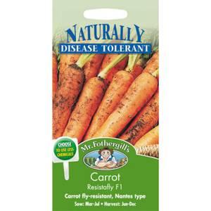 Mr. Fothergill's Carrot Resistafly F1 (Daucus Carota) Seeds
