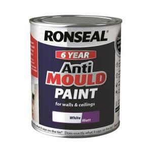 Ronseal Anti Mould Paint Matt 750ml