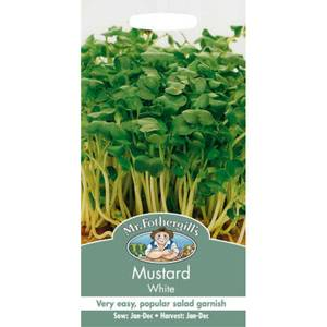Mr. Fothergill's Mustard White (Brassica Sinapsis Alba) Seeds