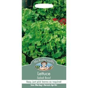 Mr. Fothergill's Lettuce Salad Bowl (Lactuca Sativa) Seeds