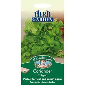 Mr. Fothergill's Coriander Herb Seeds