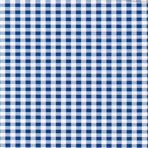 Fablon Sticky Back Plastic - Blue Gingham - 450mm x 2m