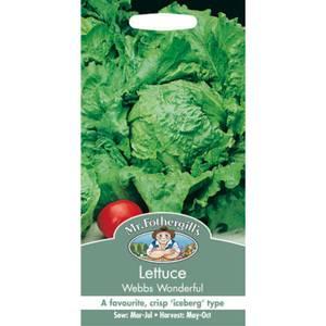 Mr. Fothergill's Lettuce Webbs Wonderful (Lactuca Sativa) Seeds