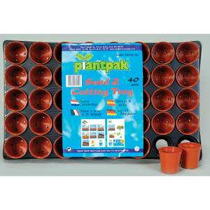 Seed And Cutting Tray - 40 Pots