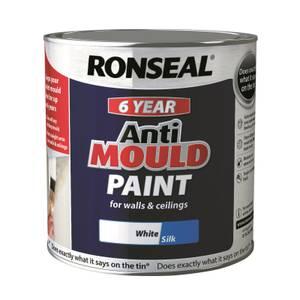 Anti Mould Paint White Silk - 2.5L