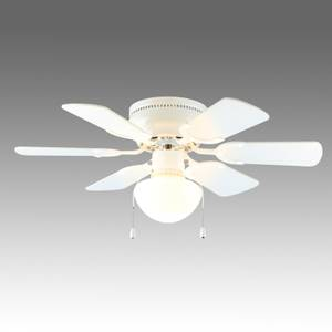 30 6 Blade Ceiling Fan with Light