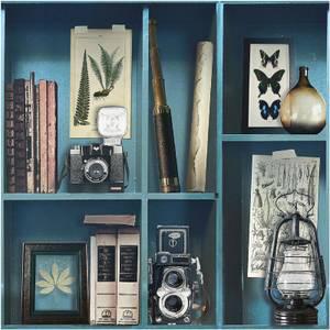 Superfresco Easy Paste the Wall Curiosite Biblio Wallpaper - Blue