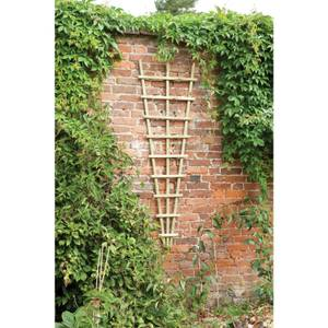 Traditional Fan Trellis 180 x 60cm