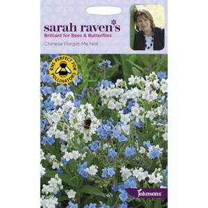 Sarah Ravens Chinese Forget Me Not Seeds