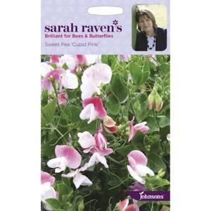 Sarah Ravens Sweet Pea Cupid Pink Seeds