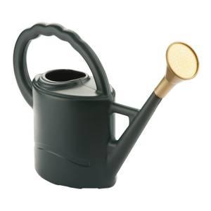 Woodstock Green Watering Can - 2L