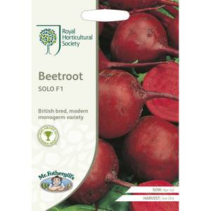 RHS Beetroot Solo F1 Seeds