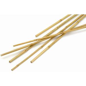 Bamboo Canes - 1.5m