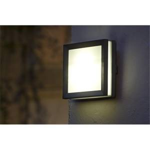 Lutec Seine 4W LED Wall Light - Graphite and Opal