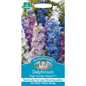 Delphinium High Society Mixed F1 Seeds
