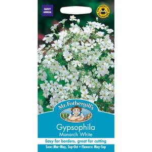 Mr. Fothergill's Gypsophilia Monarch White Seeds