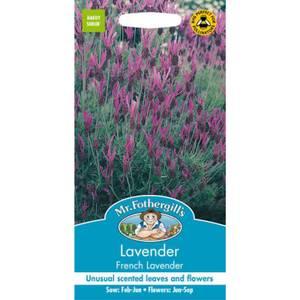 Mr. Fothergill's Lavender French Lavender Seeds