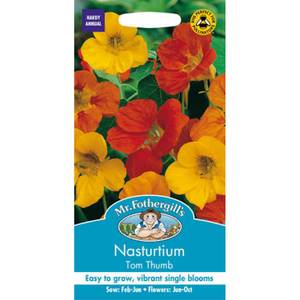 Nasturtium Tom Thumb Seeds