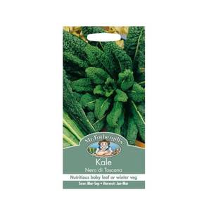 Kale Nero Di Toscana Vegetable Seeds