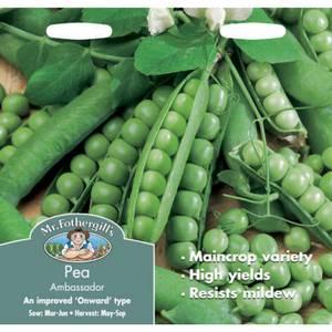 Mr. Fothergill's Pea Ambassador Seeds