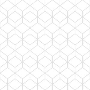 Superfresco Easy Myrtle Geo White/Silver Wallpaper