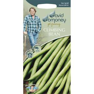 David Domoney Climbing Bean Seeds