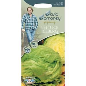 David Domoney Lettuce Iceberg Seeds