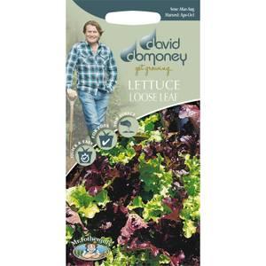 David Domoney Lettuce Loose Leaf  Seeds