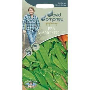 DD Pea Mangetout Seeds
