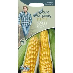 David Domoney Sweet Corn Seeds