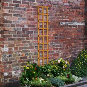 Heavy Duty Trellis - 30cm - Pack of 10