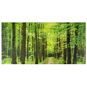 Forest Path Outdoor Canvas 59x119cm