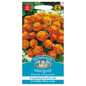 Mr. Fothergill's French Marigold Honeycomb Seeds